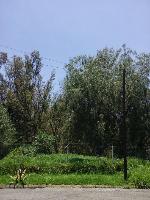 Propiedad similar 2101619 en Bosques del Lago.