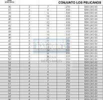 Foto de terreno habitacional en venta en boulevard paseo bagdad , bagdad, matamoros, tamaulipas, 3349262 No. 04