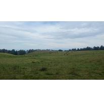 Foto de terreno habitacional en venta en, briones, coatepec, veracruz, 2388614 no 01
