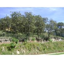 Foto de terreno habitacional en venta en  , bugambilias, zapopan, jalisco, 1722998 No. 01