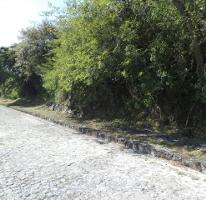 Foto de terreno habitacional en venta en  , burgos bugambilias, temixco, morelos, 4031376 No. 01