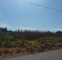 Propiedad similar 1563446 en Santa Cruz Chignahuapan.