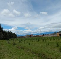 Foto de terreno habitacional en venta en, cacalomacán, toluca, estado de méxico, 2036556 no 01