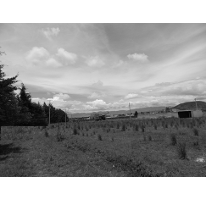 Foto de terreno habitacional en venta en  , cacalomacán, toluca, méxico, 2036556 No. 01