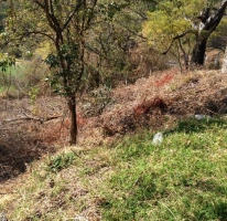 Foto de terreno habitacional en venta en, cactus, jiutepec, morelos, 604518 no 01