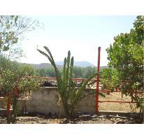 Foto de terreno habitacional en venta en caja popular 79, tehuixtla, jojutla, morelos, 2007964 No. 01