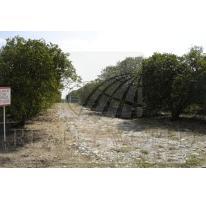 Foto de terreno habitacional en venta en  , calles, montemorelos, nuevo león, 2636068 No. 01