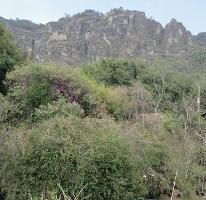 Foto de terreno habitacional en venta en camino a mezatitla , tepoztlán centro, tepoztlán, morelos, 3085479 No. 01