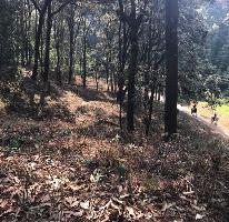 Foto de terreno habitacional en venta en camino a san simon el alto , avándaro, valle de bravo, méxico, 4009947 No. 02