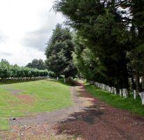 Foto de terreno habitacional en venta en camino del panteon 9, santo tomas ajusco, tlalpan, df, 2200120 no 01