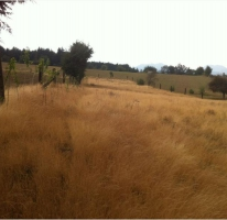 Foto de terreno habitacional en venta en camino real a oyameyo, san miguel topilejo, tlalpan, df, 878997 no 01