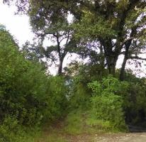 Foto de terreno habitacional en venta en camino sin nombre, candelaria , valle de bravo, valle de bravo, méxico, 4010029 No. 01