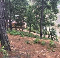 Foto de terreno habitacional en venta en camino sin nombre, tres puentes, valle de bravo , valle de bravo, valle de bravo, méxico, 4010123 No. 01