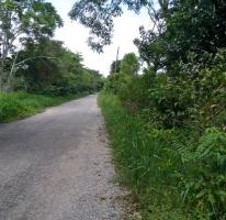 Propiedad similar 516855 en Camino Vecinal La Piedra 2da 1.7km De Carretera Federal # 6.