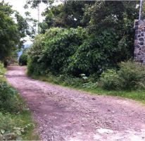 Foto de terreno habitacional en venta en camino viejo a jalmolonga, malinalco, malinalco, estado de méxico, 1925424 no 01