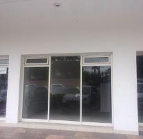Foto de local en renta en  , campestre la rosita, torreón, coahuila de zaragoza, 2775467 No. 01