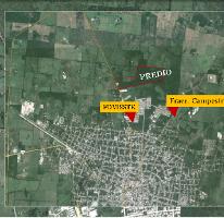 Foto de terreno comercial en venta en  , campestre san francisco, tizimín, yucatán, 2991775 No. 01