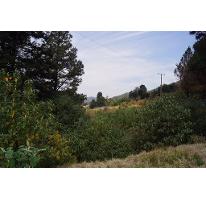 Foto de terreno habitacional en venta en  , cañada de alférez, lerma, méxico, 2261994 No. 01