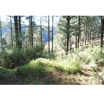 Foto de terreno habitacional en venta en  , cañada de alférez, lerma, méxico, 2611645 No. 01