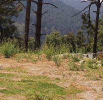 Foto de terreno habitacional en venta en  , cañada de alférez, lerma, méxico, 4283371 No. 01