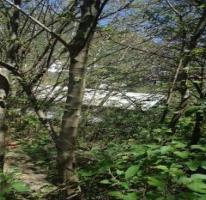 Propiedad similar 4403246 en Cañada del Sur A. C..