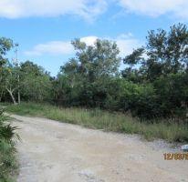 Foto de terreno habitacional en venta en, cancún centro, benito juárez, quintana roo, 2343322 no 01