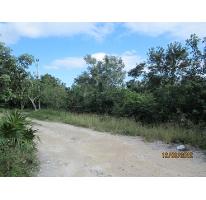 Foto de terreno habitacional en venta en  , cancún centro, benito juárez, quintana roo, 2588270 No. 01