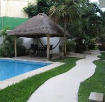 Foto de departamento en renta en  , cancún centro, benito juárez, quintana roo, 3775456 No. 01