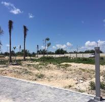 Foto de terreno habitacional en venta en  , cancún centro, benito juárez, quintana roo, 3946944 No. 01