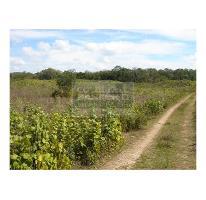 Foto de terreno habitacional en venta en  , cancún centro, benito juárez, quintana roo, 682321 No. 01