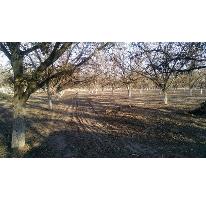 Foto de terreno habitacional en venta en carlos arruza 0, san agustin, torreón, coahuila de zaragoza, 2132213 No. 01