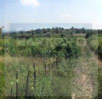 Foto de terreno habitacional en venta en carretera cuernavaca tepoztlan, tepoztlán centro, tepoztlán, morelos, 1414267 no 01