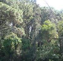 Foto de terreno habitacional en venta en carretera federal #, huitzilac, huitzilac, morelos, 3536941 No. 01