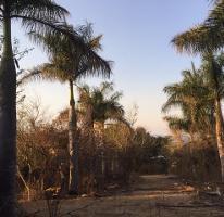 Foto de casa en venta en carretera guadalajara -morelia kilometro 76 1/2 , san luis soyatlan, tuxcueca, jalisco, 3732960 No. 01