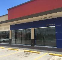 Foto de local en renta en carretera tampico mante 0, altamira centro, altamira, tamaulipas, 3644584 No. 01
