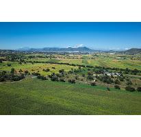 Foto de terreno habitacional en venta en carretera tepeapulco - ciudad sahagún - hidalgo 1, tepeapulco centro, tepeapulco, hidalgo, 2132244 No. 03