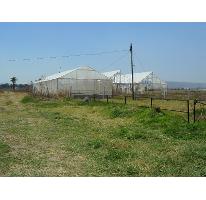 Foto de terreno habitacional en venta en  ----, nuevo méxico, zapopan, jalisco, 380744 No. 01