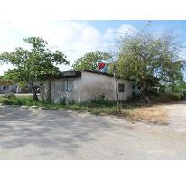 Foto de terreno habitacional en venta en  , celestun, celestún, yucatán, 2756480 No. 01