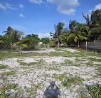 Foto de terreno habitacional en venta en  , celestun, celestún, yucatán, 3640159 No. 01
