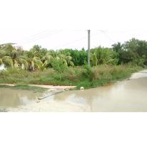 Foto de terreno habitacional en venta en  , celtun, chichimilá, yucatán, 2612757 No. 01