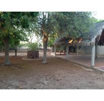 Foto de terreno habitacional en venta en  , centenario, la paz, baja california sur, 1291981 No. 01