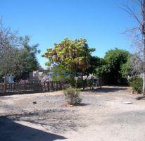 Foto de terreno habitacional en venta en, centenario, la paz, baja california sur, 1438353 no 01