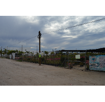 Foto de terreno comercial en venta en, centenario, la paz, baja california sur, 1769824 no 01