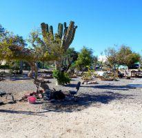 Foto de terreno habitacional en venta en, centenario, la paz, baja california sur, 2234994 no 01