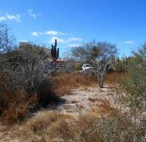 Foto de terreno habitacional en venta en  , centenario, la paz, baja california sur, 2247732 No. 01