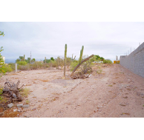 Foto de terreno habitacional en venta en  , centenario, la paz, baja california sur, 2613504 No. 01
