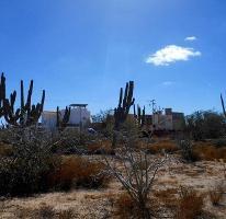 Foto de terreno habitacional en venta en  , centenario, la paz, baja california sur, 3374421 No. 01
