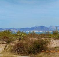 Foto de terreno habitacional en venta en  , centenario, la paz, baja california sur, 3374950 No. 01