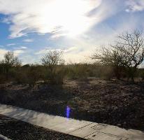 Foto de terreno habitacional en venta en  , centenario, la paz, baja california sur, 3376077 No. 01