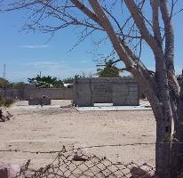 Foto de terreno habitacional en venta en  , centenario, la paz, baja california sur, 3492392 No. 01